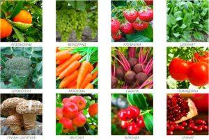 Апельсины, виноград, клубника, шпинат, броколии, морковь, свекла, помидоры, грибы шиитаке, яблоки, клюква, гранат